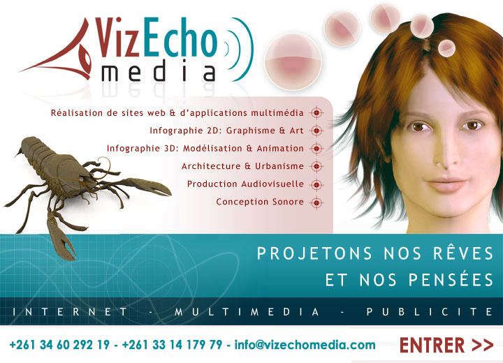 VizEcho Media, Conception d'applications multimédia, Modélisation et animation 3D, Java, Mobile